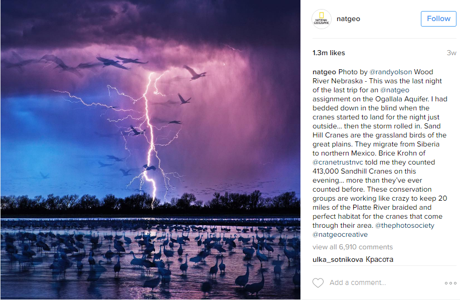 national-geographic-smm